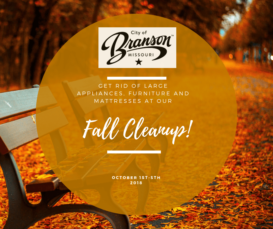 Fall cleanup pic