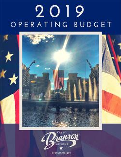 2019 Annual Operating Budget Opens in new window