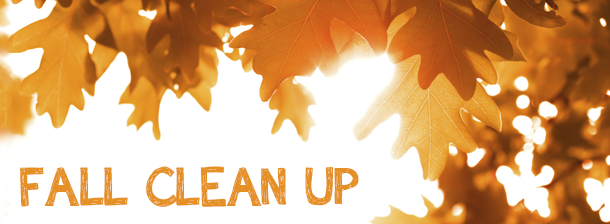 fall-clean-up-image.png